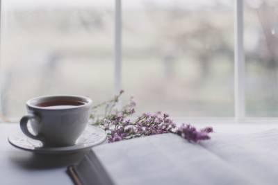 kontryhelový čaj